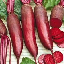 CylindraBeets