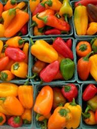 yummy peppers 020.JPG